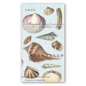 MICHEL DESIGN WORKS - SERVETTER HOSTESS SEASHELL